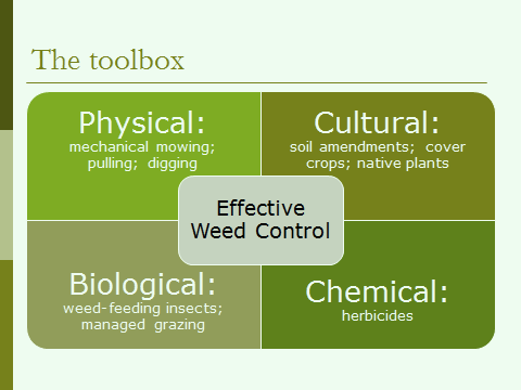 integrated weed management toolbox