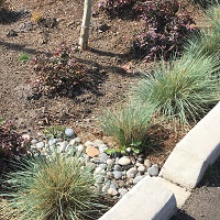 bioretention inlet square.jpg